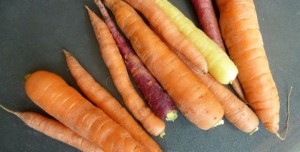 freshness farms carrots