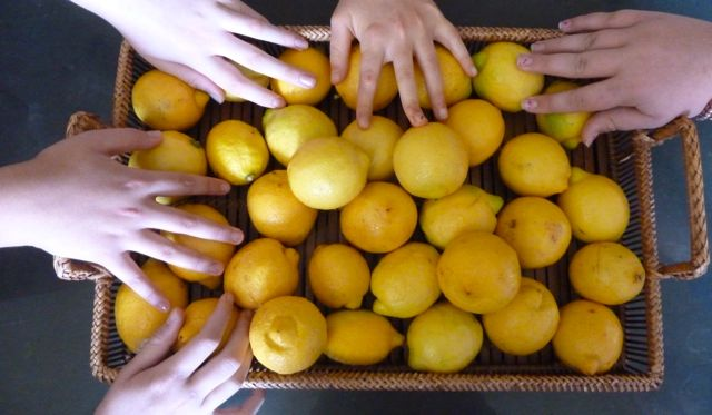 Lemon Hands